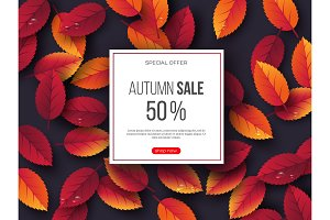 Autumn sale banner with 3d leaves and water drops. Violet background - template for seasonal discounts, vector illustration.