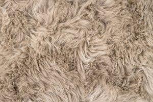 Natural sheepskin rug background