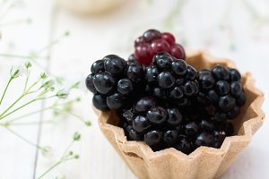 Blackberry fruit in pink cup cake