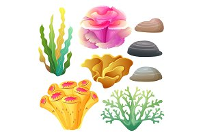 coral reef icon set