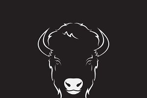 Vector of a buffalo head design.