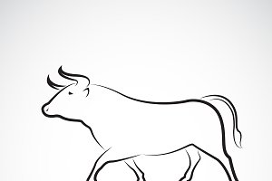Vector of bull design. Wild Animals.