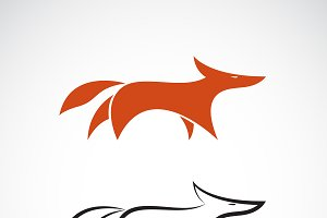 Vector of fox design. Wild Animals.
