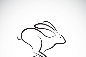 Vector of rabbit is running. Animal.
