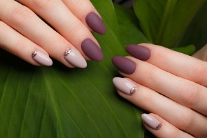 Tender neat manicure on female hands on green leaves background. Nail design