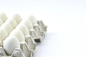 white eggs on a white background