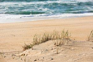 Sand beach, France