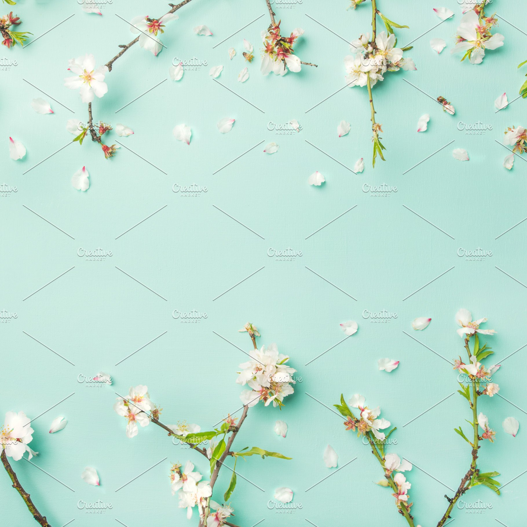 Spring Floral Background With Almond Blossom Flowers Square Crop
