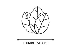 Tobacco leaves linear icon