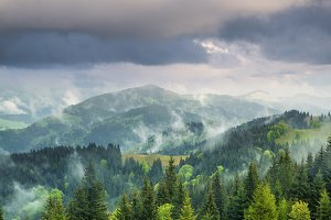 Mountains and forest in clouds