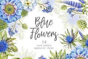 Blue Watercolor floral clipart. PNG
