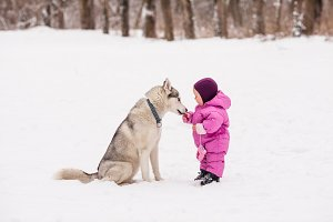 Little baby with Husky dog