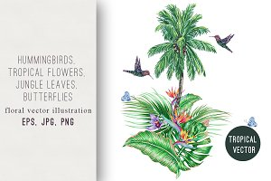 Tropical jungle summer illustration