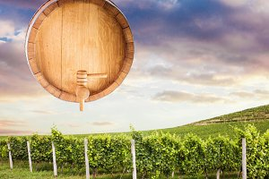 wooden barrel over vineyard