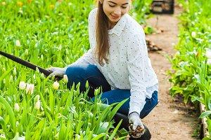 Gardener woman drops bulbs