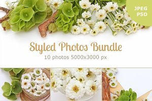 Styled Photos Bundle with Molucella