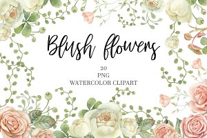 Watercolor blush flowers.