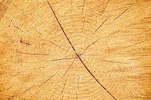 Cracked wooden texture