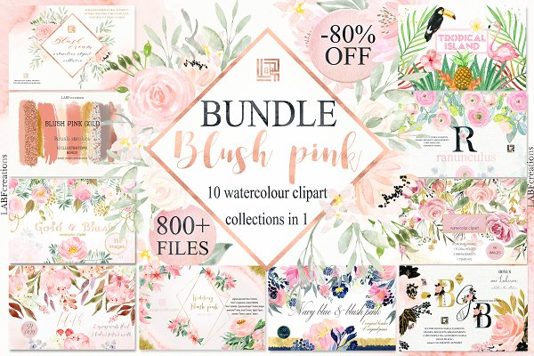 Blush Pink watercolor flowers BUNDL…