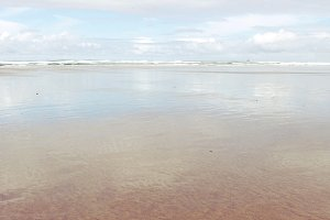 Coastal Reflection