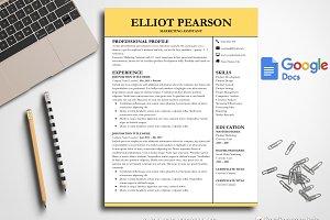 Professional Resume Google Docs