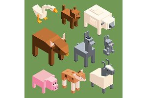 Isometric animals of farm. Vector stylized 3d animals isolate
