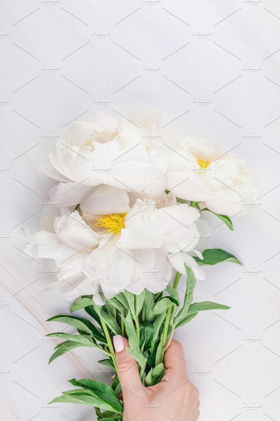 White Peony Flowers On Marble Beauty Fashion Photos Creative