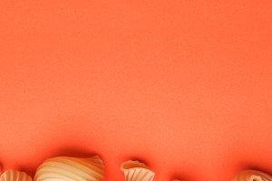 Pasta penne rigate on orange background