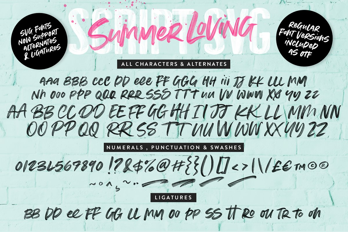 Summer Loving Font Collection in Display Fonts
