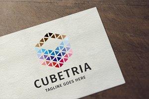 Cubetria Logo