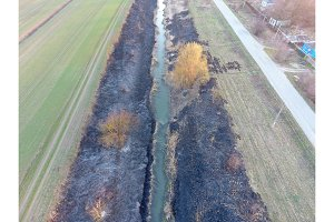 Irrigation canal with burned reeds along the shore. Ashes from the grass.