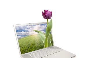 Computer Laptop Isolated with Flower