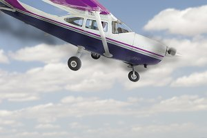 Cessna 172 With Smoking Engine