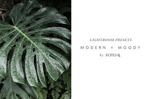 Modern + Moody Lightroom Presets