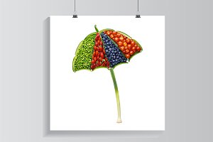 Vegetable umbrella.