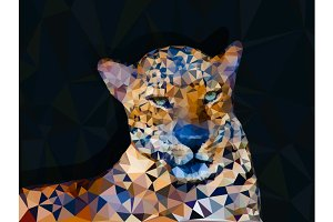 Low poly geometric of leopard