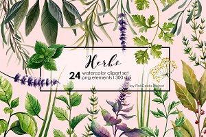 HERBS watercolor clip art set