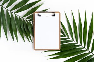 Clipboard and green leaves