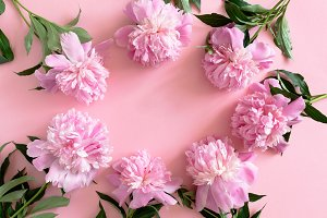 Border frame made of peonies