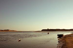 Peaceful summer landscape