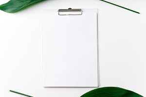 Palm leaves and a paper notebook