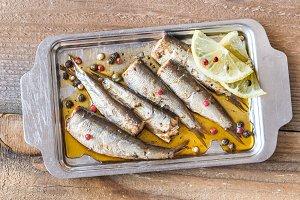 Sardines on the metal plate