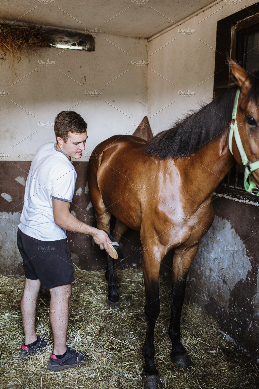 Resultado de imagem para guy taking care of horses