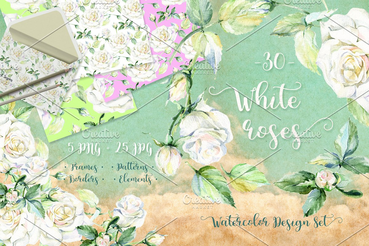 Delicate white roses PNG watercolor