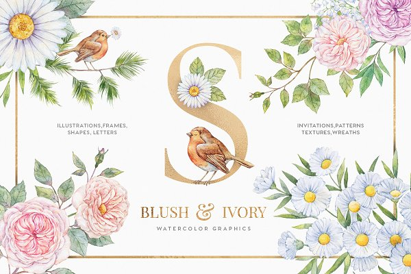 Illustrations and Illustration Products: Tugcu Design Co. - Blush & Ivory Watercolor Floral Set