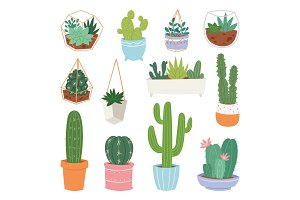 Cactus vector cartoon botanical cacti potted cute cactaceous succulent plant botany illustration isolated on white background