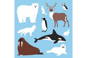 Arctic animals cartoon vector polar bear or penguin character collection with whale reindeer and seal in snowy winter antarctica set isolated illustration
