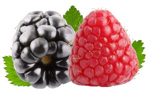 One raspberry and one blackberry