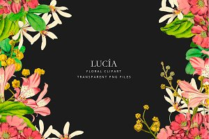 Antique pink flowers - Lucia