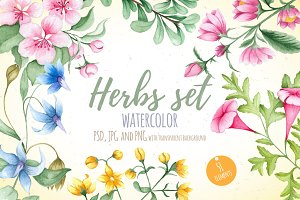 Watercolor Herbs Set